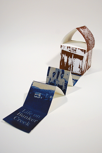 Invented book structure, cyanotype, Book Arts and Letterpress, Spring 2012