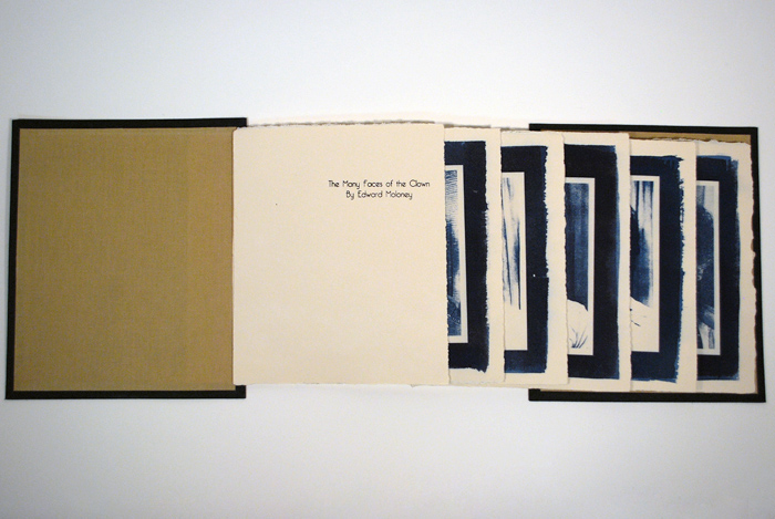 Concertina bound book, letterpress, cyanotype, Book Arts and Letterpress, Spring 2012