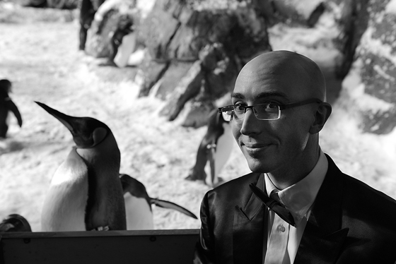 penguin_encounter05