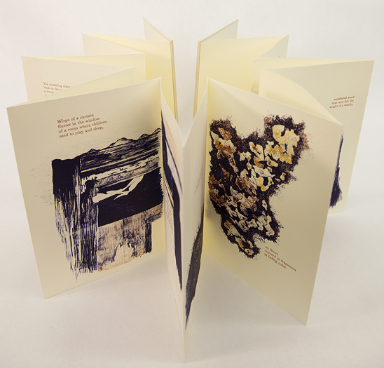 Artist: Katelyn Bladel Lithography and letterpress Artist Book, 2015 Edition of 12